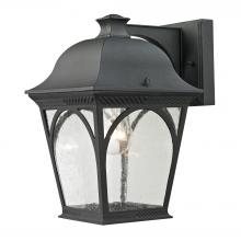 Thomas 8301EW/65 - Cape Ann 1 Light Outdoor Wall Sconce In Matte Te